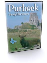 Purbeck DVD