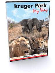 Kruger Park - My Way